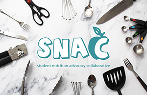 SNAC recipes