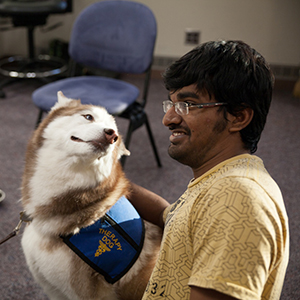 Student petting a PAWS dog